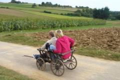 leiterwagenrennen_hemmingen_2008_008